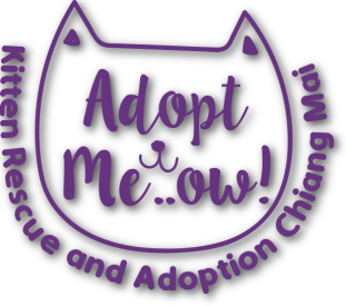 Adopt Meow logo with drop shadow