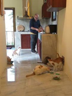 Feeding time....with Jeffrey, Jamie, Josh,Tabs and Jojo